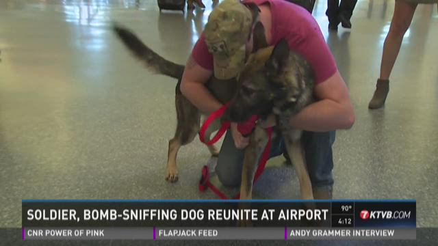 Soldier, bomb-sniffing dog reunite at airport