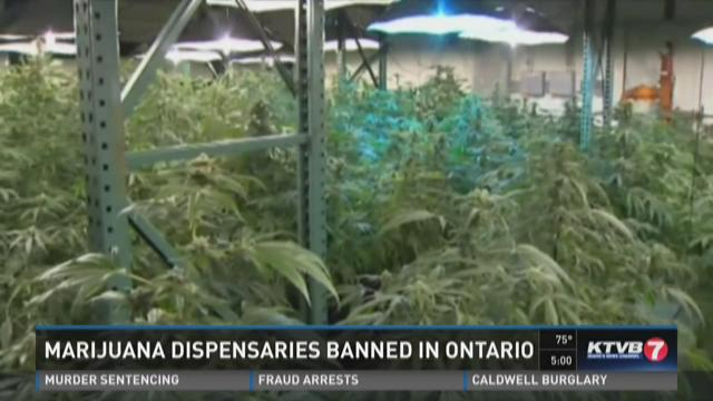 Marijuana dispensaries banned in Ontario