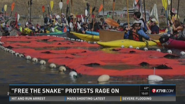 """""""Free the Snake"""" protests rage on"""